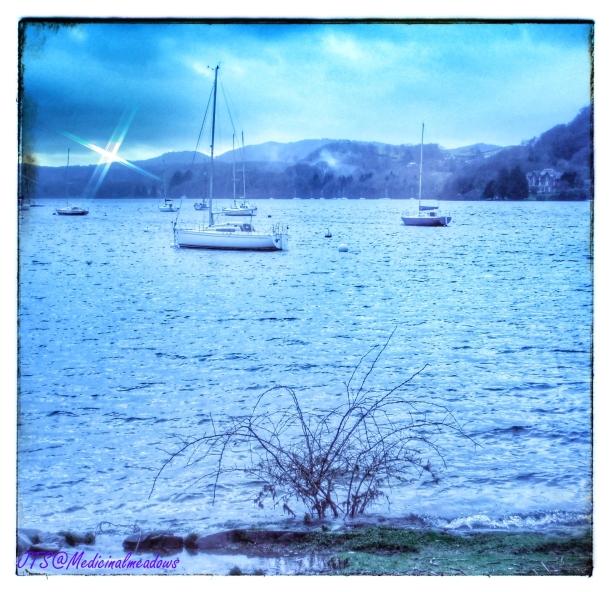 Cold shores