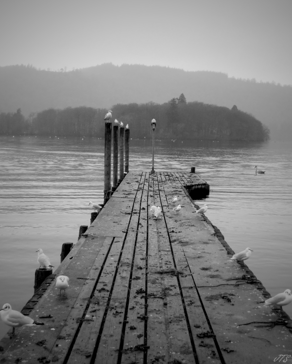 bowness1
