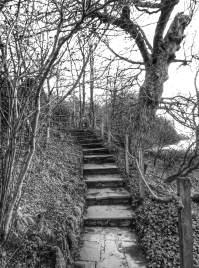 brantwood steps