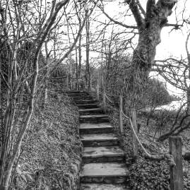 brantwood steps